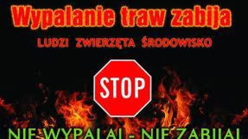 STOP WYPALANIU TRAW!!!